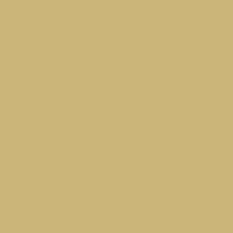 confetti-popper-icon-gold